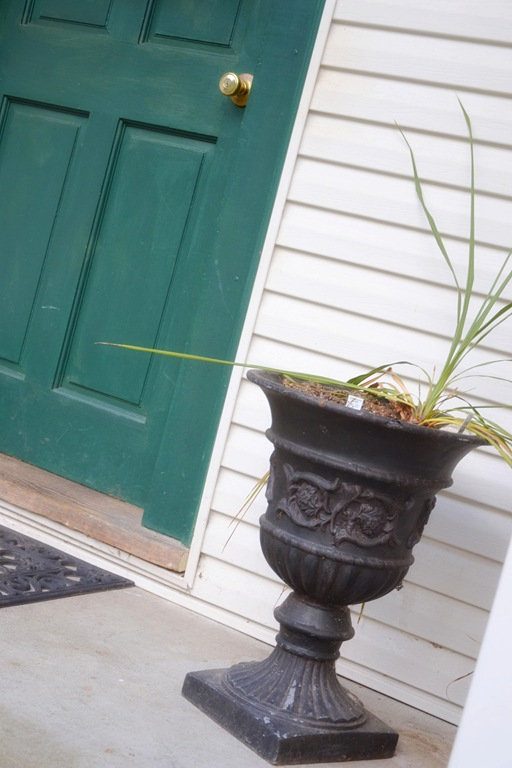 Celebrate Spring! ~ Plant a Living Bouquet