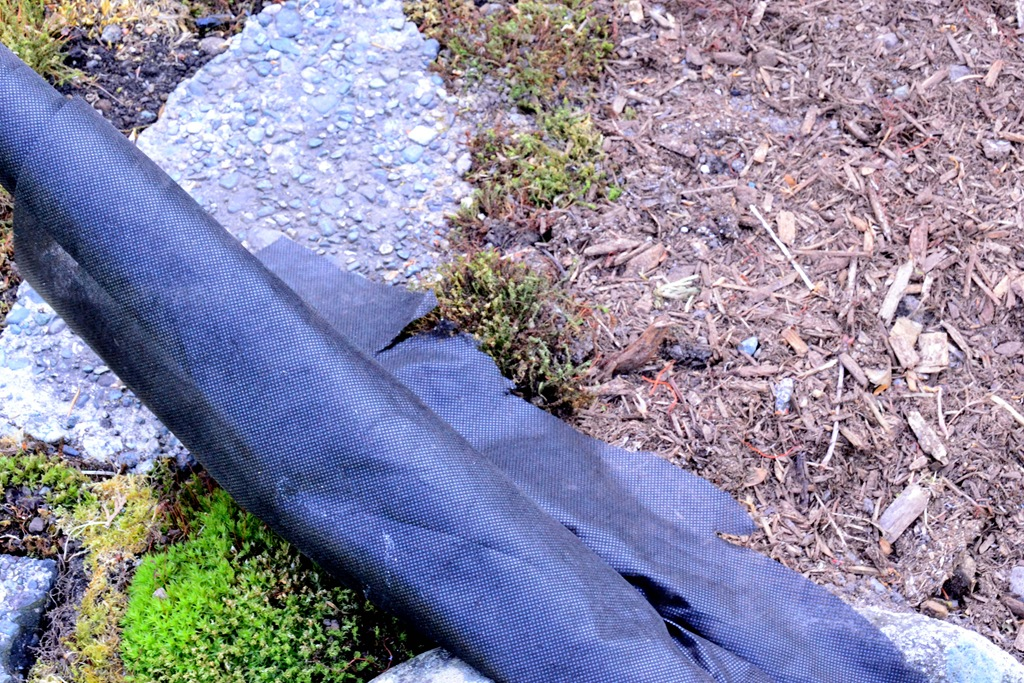 Landscaping Mulch Fabric : My top guilt free gardening tips harbour breeze home