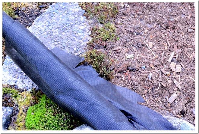 landscape fabric and bark mulch