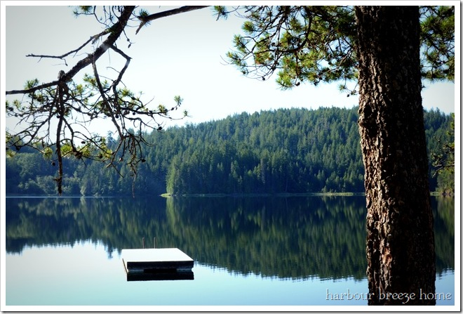 the morning lake
