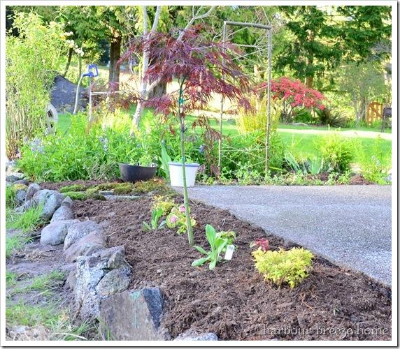 flower beds after