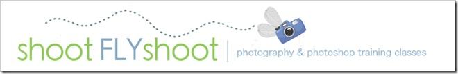 shootFLYshoot_header