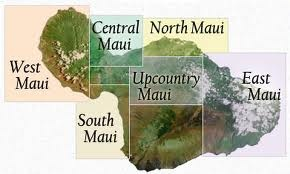 Discover Upcountry Maui| Travelling in Hawaii