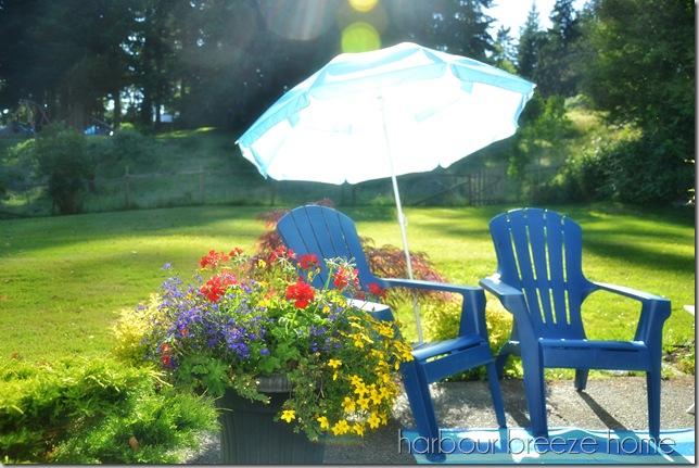 patio in the sun