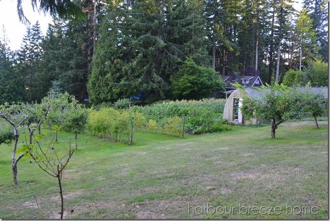 whole camp garden