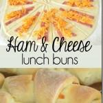 Ham & Cheese Buns