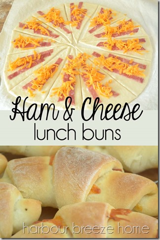 ham and cheese lunch buns at harbourbreezehome