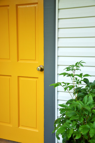 Yellow Marigold and Kendall Charcoal Front Door