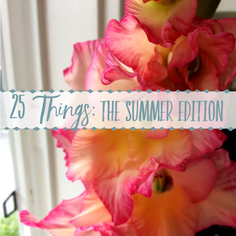 25 Things ~ The Summer Instagram Edition