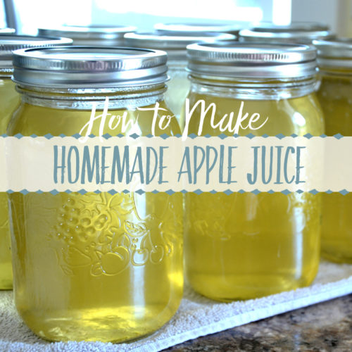 how to make homemade apple juice recipe