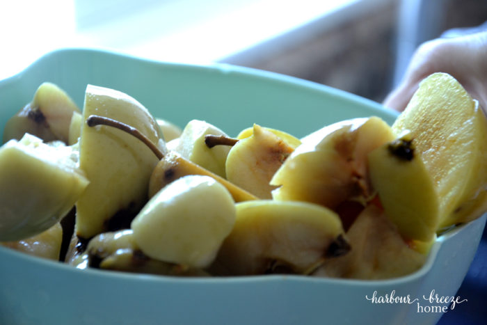 How to make apple juice - chunks of apples being used to make homemade apple juice recipe