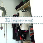Master Bedroom Closet Reveal