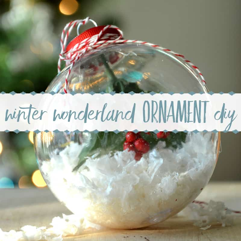 Simple Christmas Craft ~ Winter Wonderland Ornament