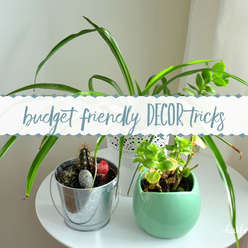 The Most Budget Friendly Decor Trick of All