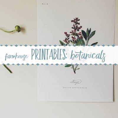 100+ Free Farmhouse Printables- Botanical Sets