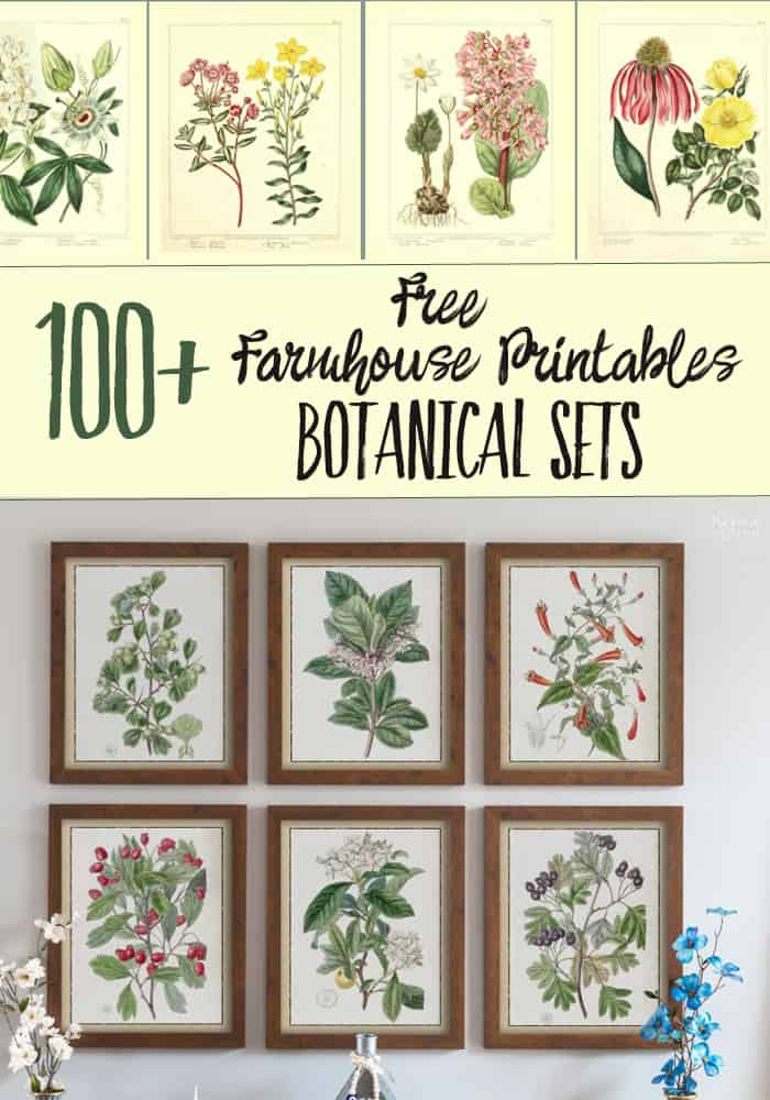 photo about Printable Print called 100+ Free of charge Farmhouse Printables- Botanical Sets Harbour