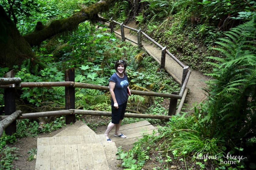 lady standing on a path in a park with ferns and trees