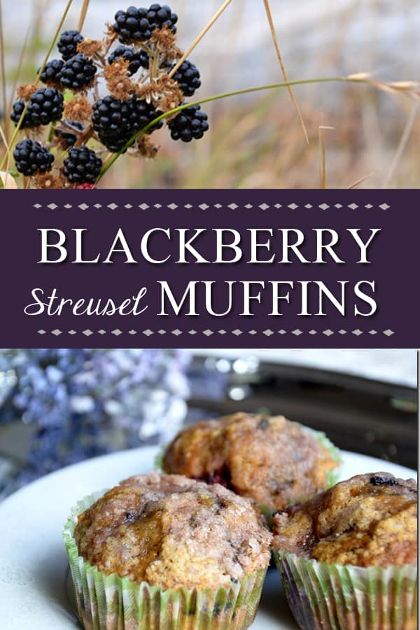 Blackberry Pumpkin Streusel Muffins Recipe