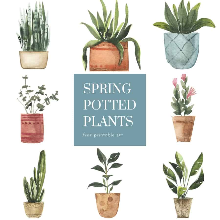 free watercolor potted plants printables