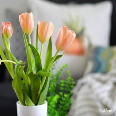 5 Simple & Affordable Ways to Refresh Your Home for Spring