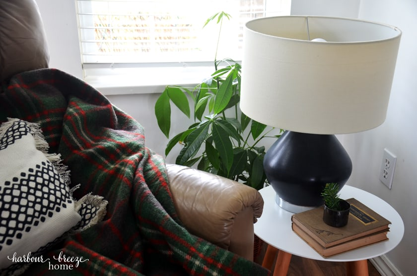 DIY Painted Ceramic Lamp painted in black, sitting on a living room end table with a green plant behind it and a stack of books in front of it.