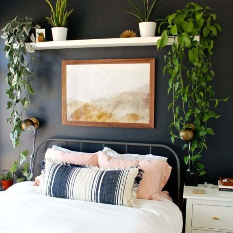 Inspired by Stunning Black Accent Walls in Bedrooms