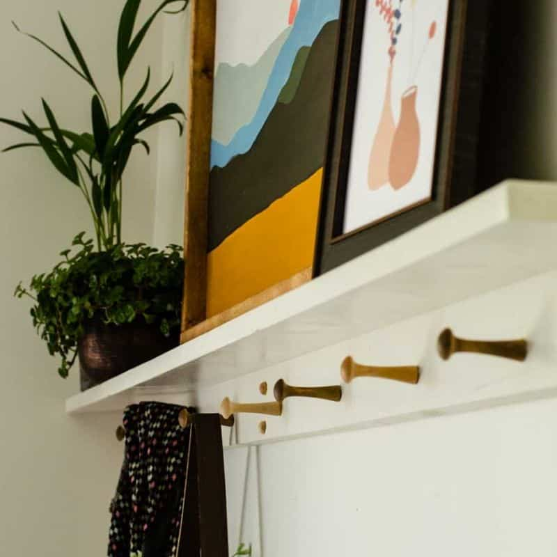 Modern Peg Rail and Shelf