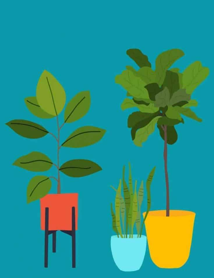 8 FREE MODERN PLANT ART PRINTABLES