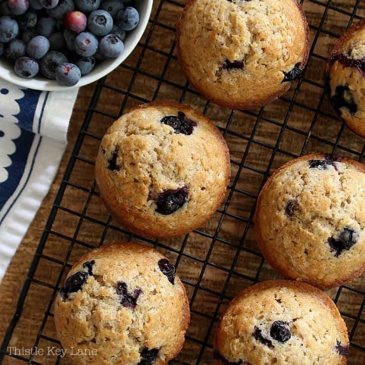 Basic Blueberry Muffin Recipe With Gluten Free Options