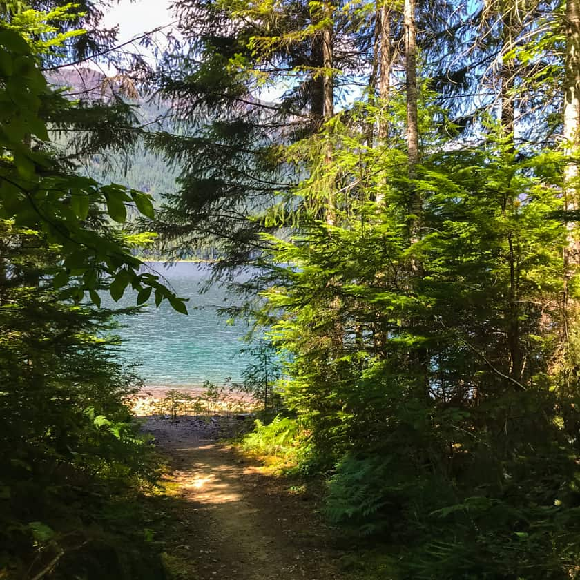 A trail with trees on both sides leading to a lake.