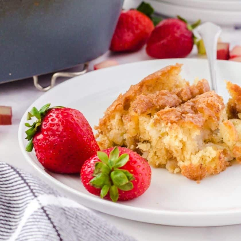 You're Going to Want to Try this Rhubarb Cake Recipe!