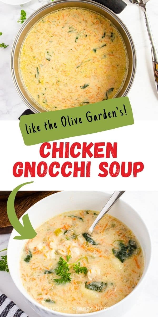 Chicken Gnocchi Soup recipe - like the Olive Garden's