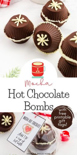 Mocha Hot Chocolate Bombs recipe made with Fireside Coffee mix - packaged with a printable gift tag.