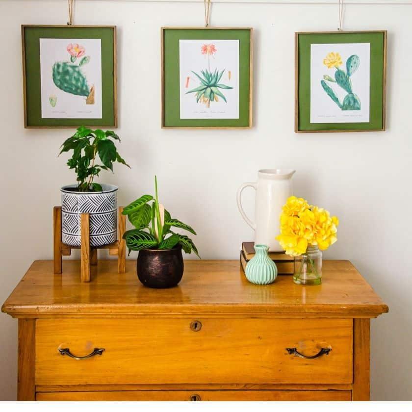 Free Botanical Cactus Wall Art Printables