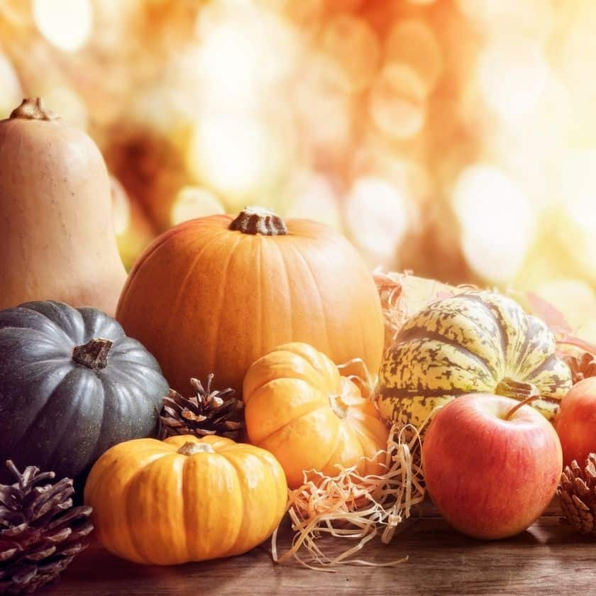 Ideas and Tips for Decorating with Pumpkins this Fall