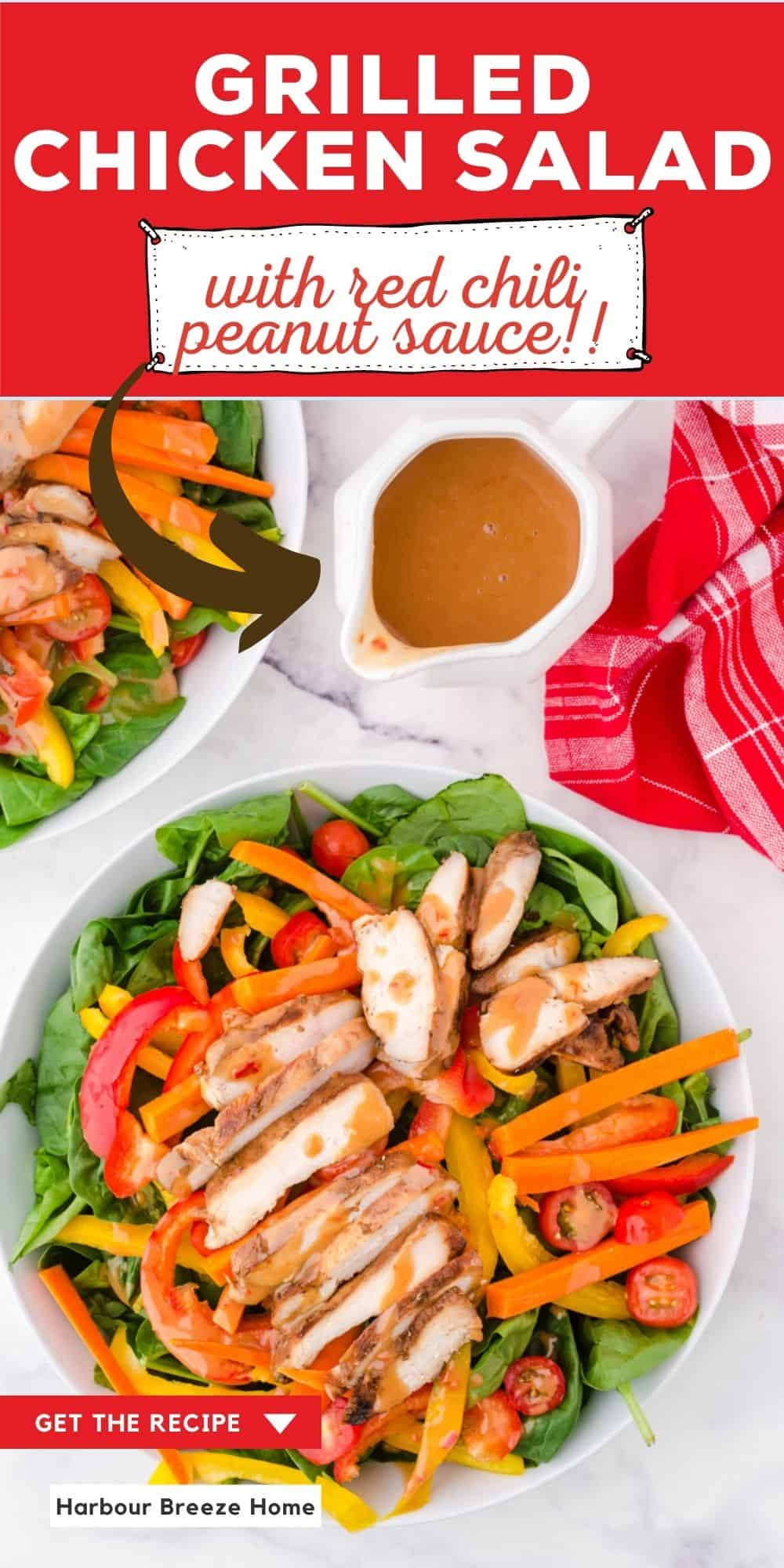 Grilled Chicken Salad with red chili peanut sauce