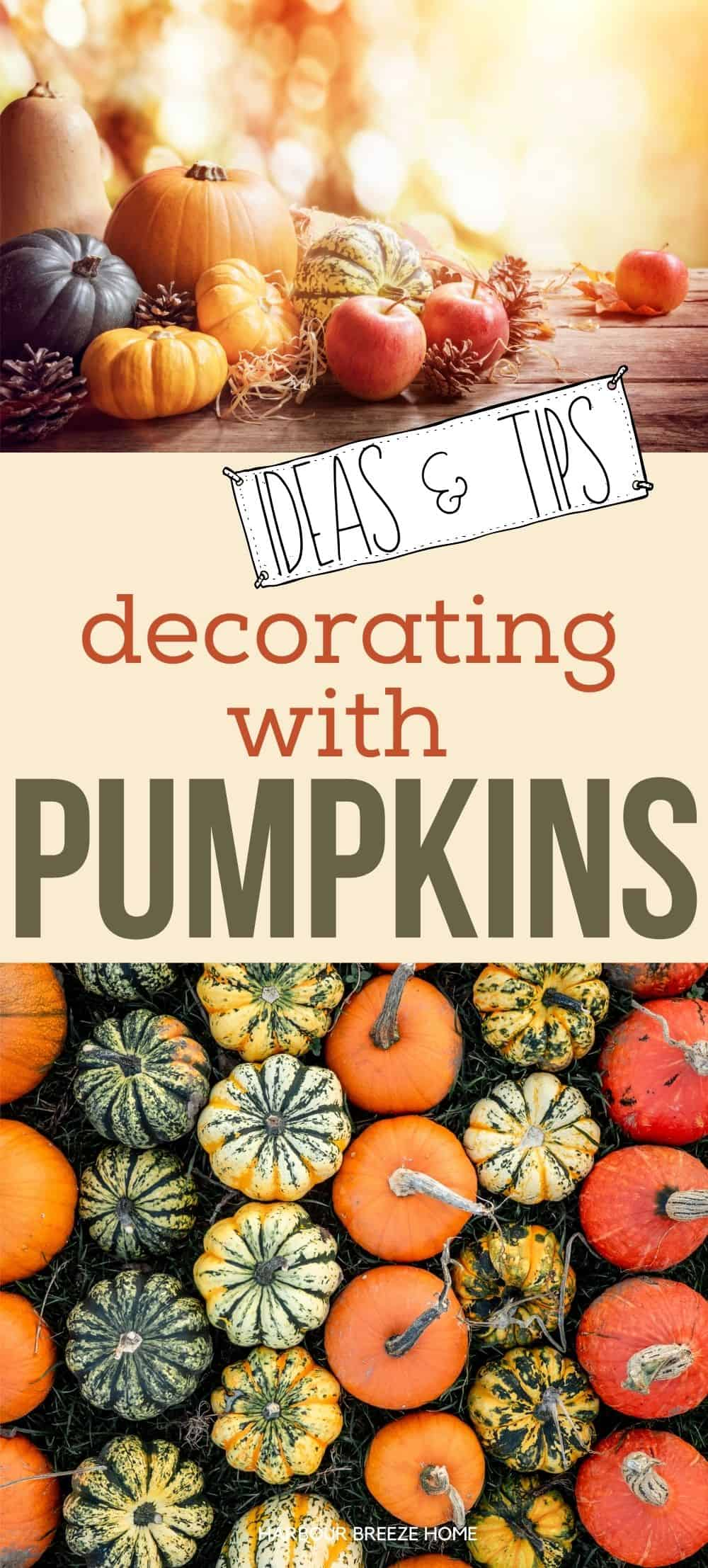 Decorating with pumpkins for Fall - Ideas, tips, & tricks